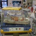 Benjamin Spencer in incubator