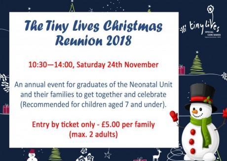 Christmas Reunion Flyer (Web)