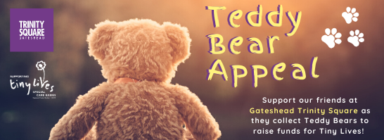 Teddy Bear Appeal (Feb 2020) Email Footer