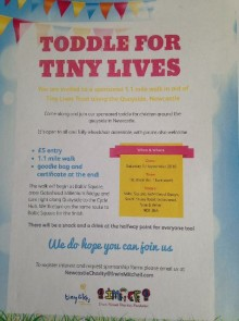 Toddle for Tiny Lives